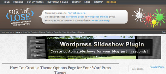 How To Create a Theme Options Page for Your WordPress Theme