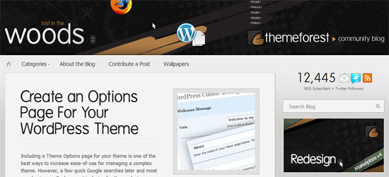 Create An Options Page For Your WordPress Theme