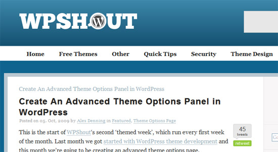 Create An Advanced Theme Options Panel In WordPress