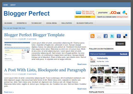 WP Perfect Blogger Template